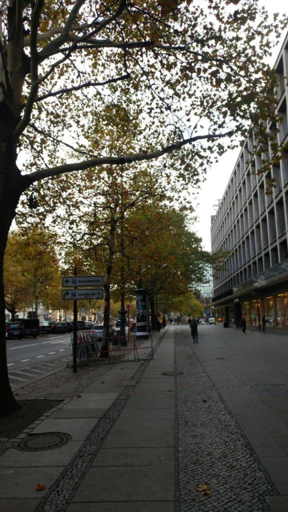 پیاده روی در برلین