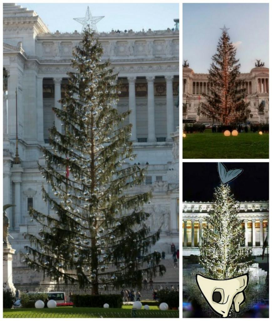 درخت کریسمسی رُم
